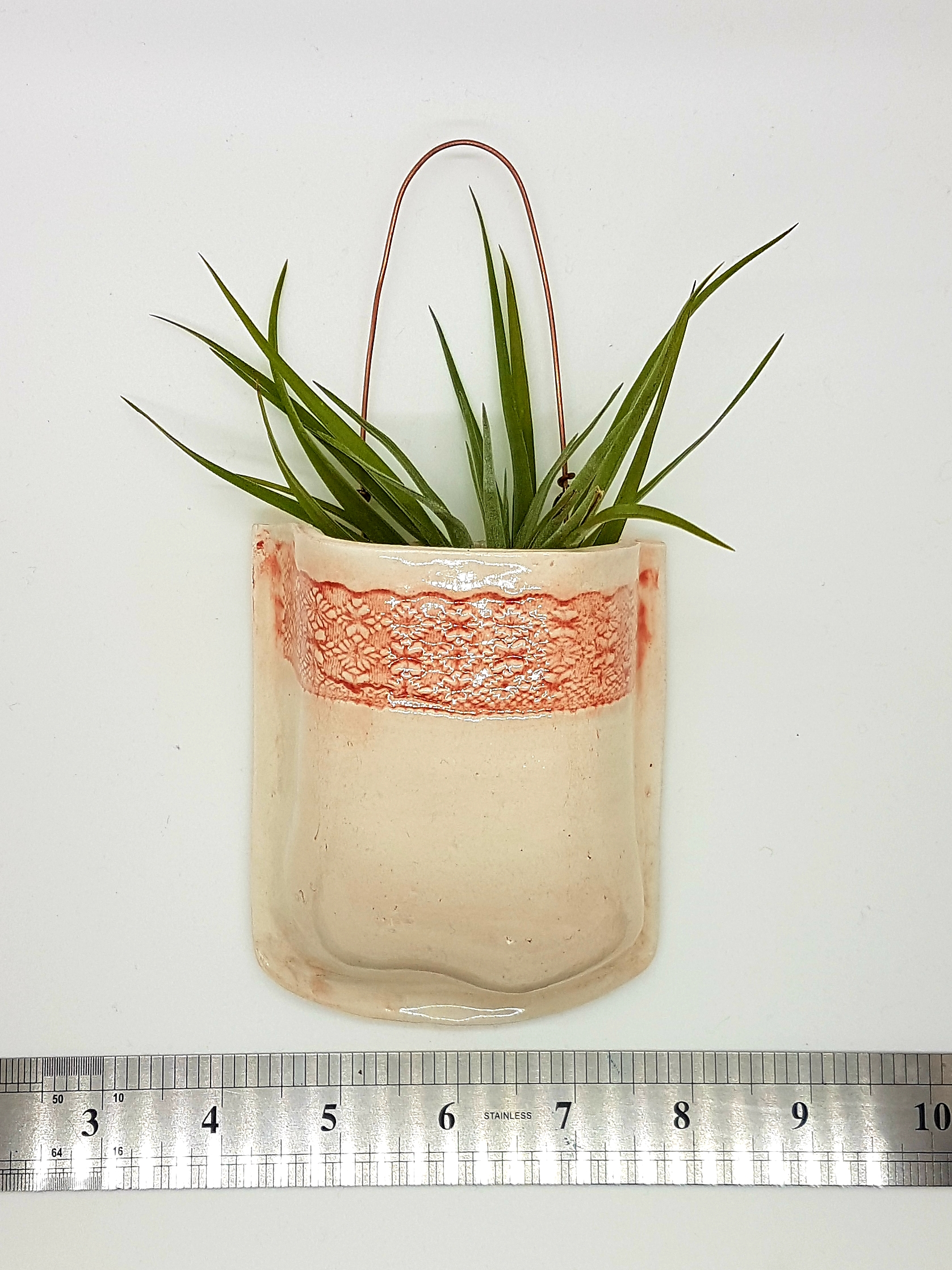 Ceramic wall pocket with air plant