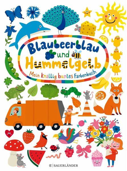 Blaubeerblau und Hummelgelb X Mein knallig buntes Farbenbuch