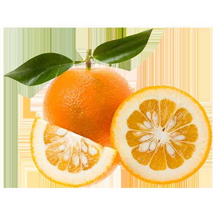 Eterisk olja - Apelsin bitter / Orange bitter