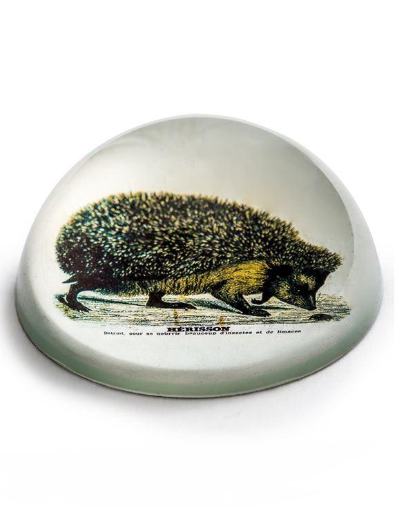 Hedgehog Paperweight