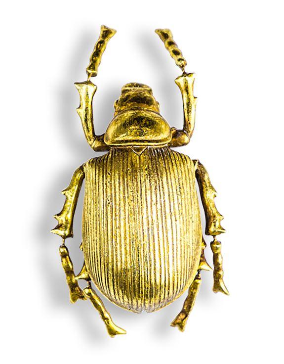 Gold Scarab Beetle Wall Decor
