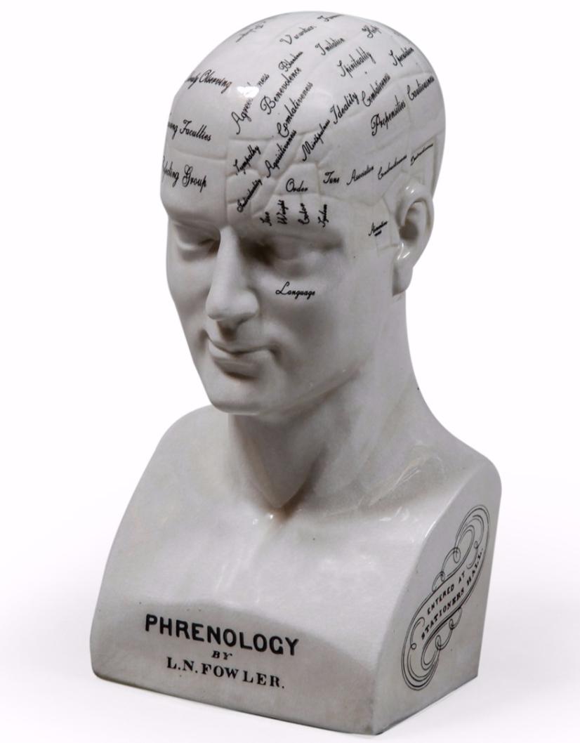 Large Ceramic Phrenology Head