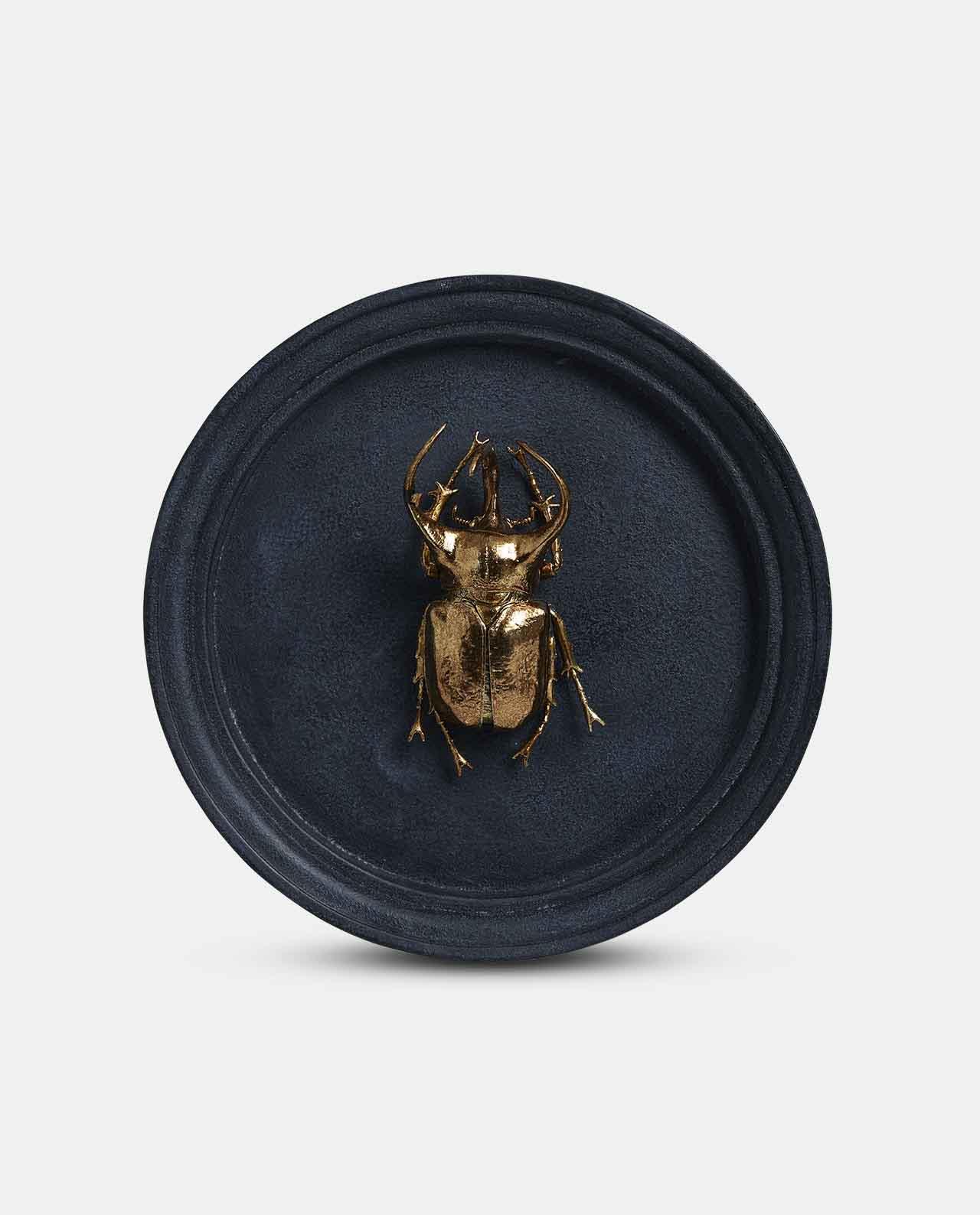 Beetle Plaque No5