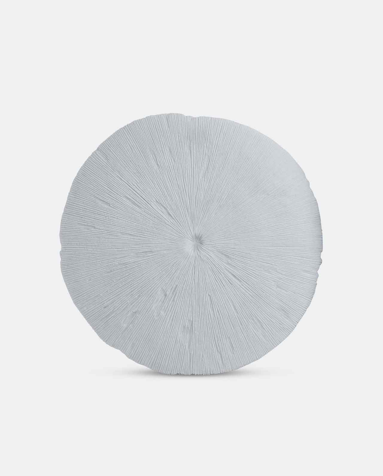Large White Round Ribbed Coral Wall Décor
