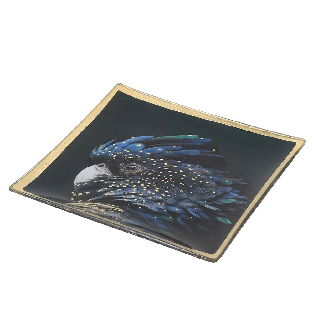 Parrot Square Trinket Tray