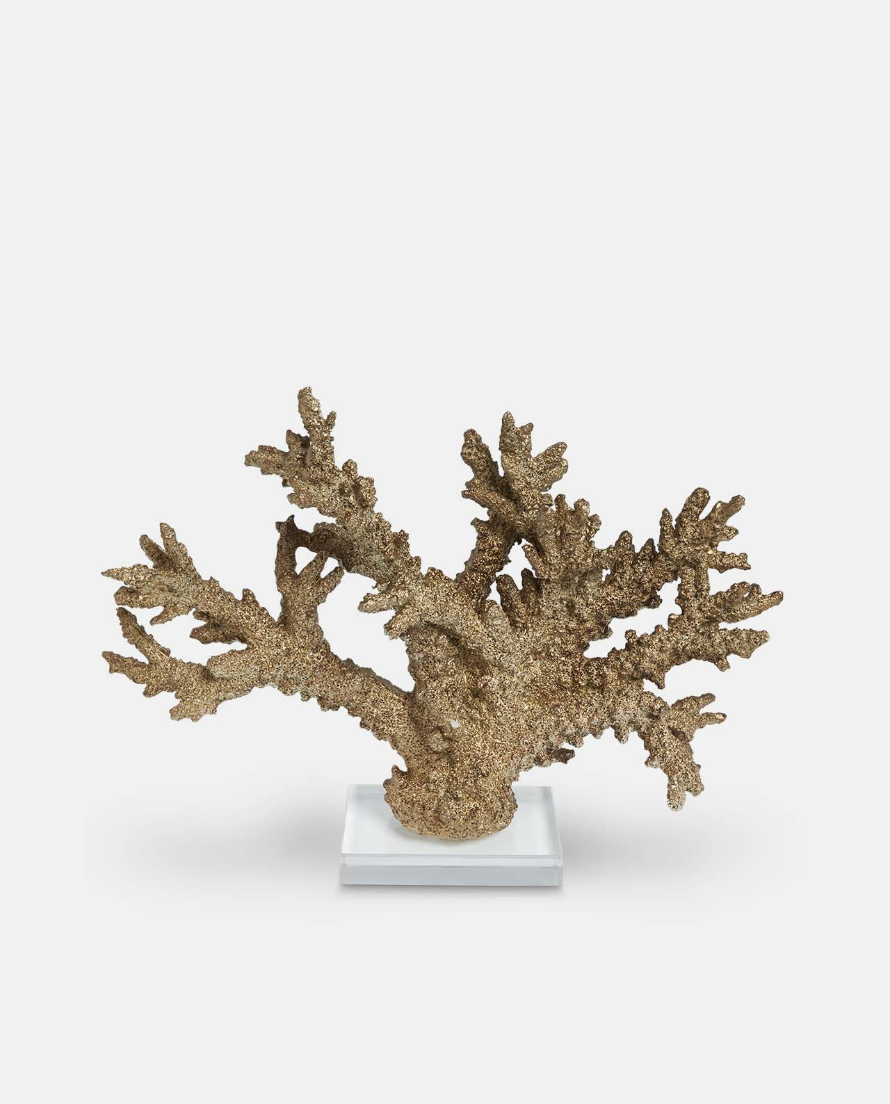 Gold Decorative Coral Medium