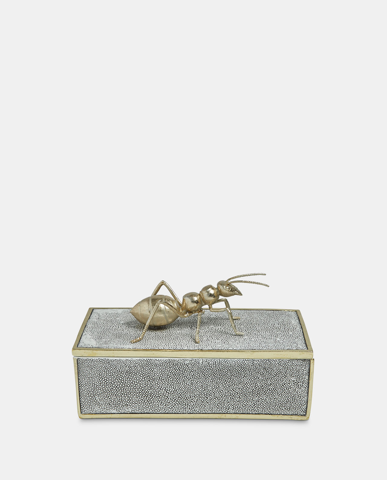 Decorative Ant Box