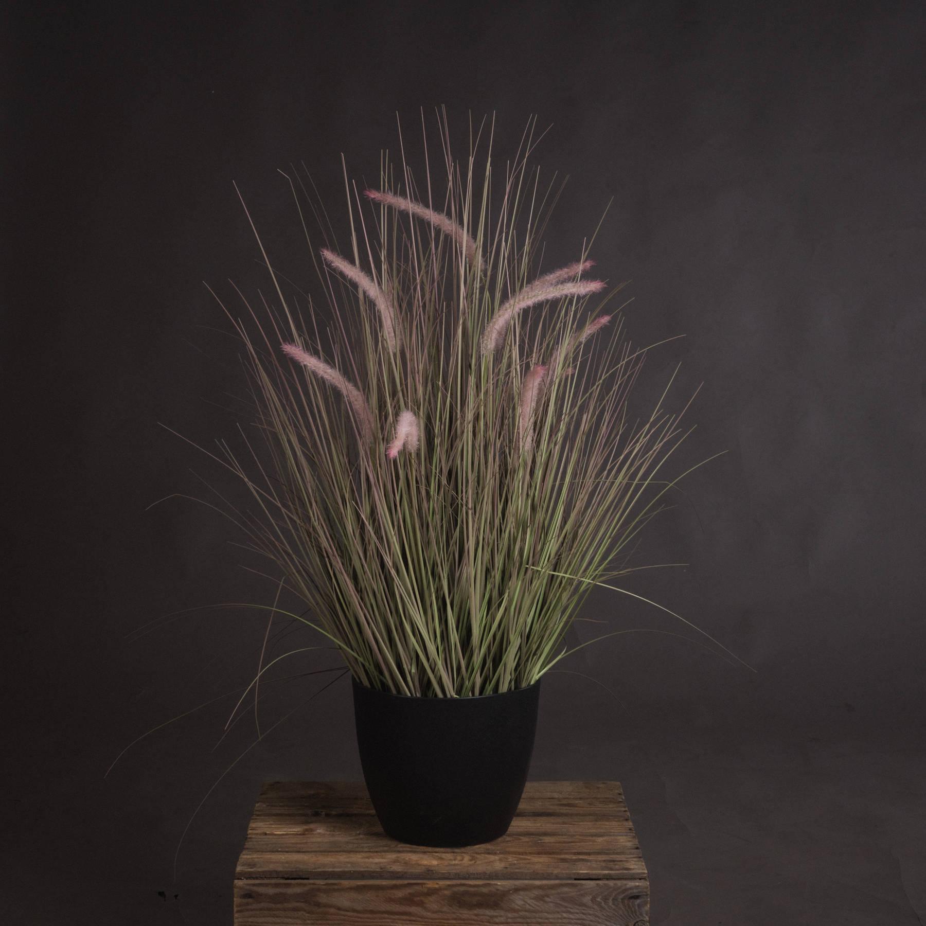 Wild Grasses, Black Pot 92cm