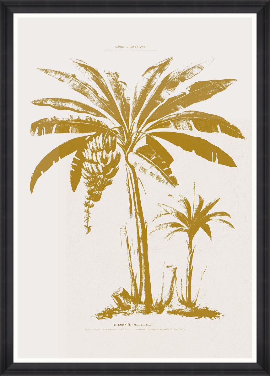 LE BANANIER Framed Print