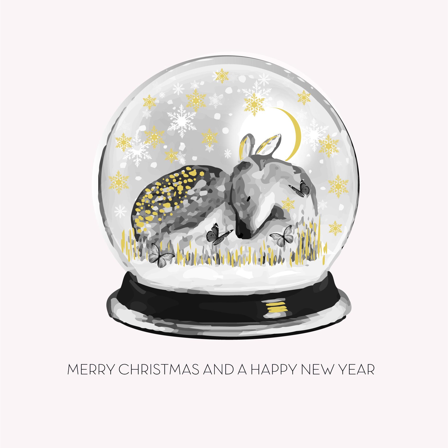 Box of 6 Christmas Globe Cards