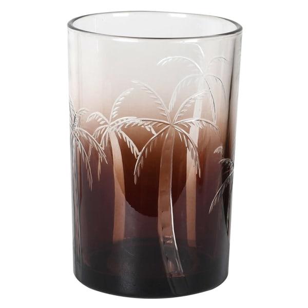 Hurricane Ombre Palm  - Medium