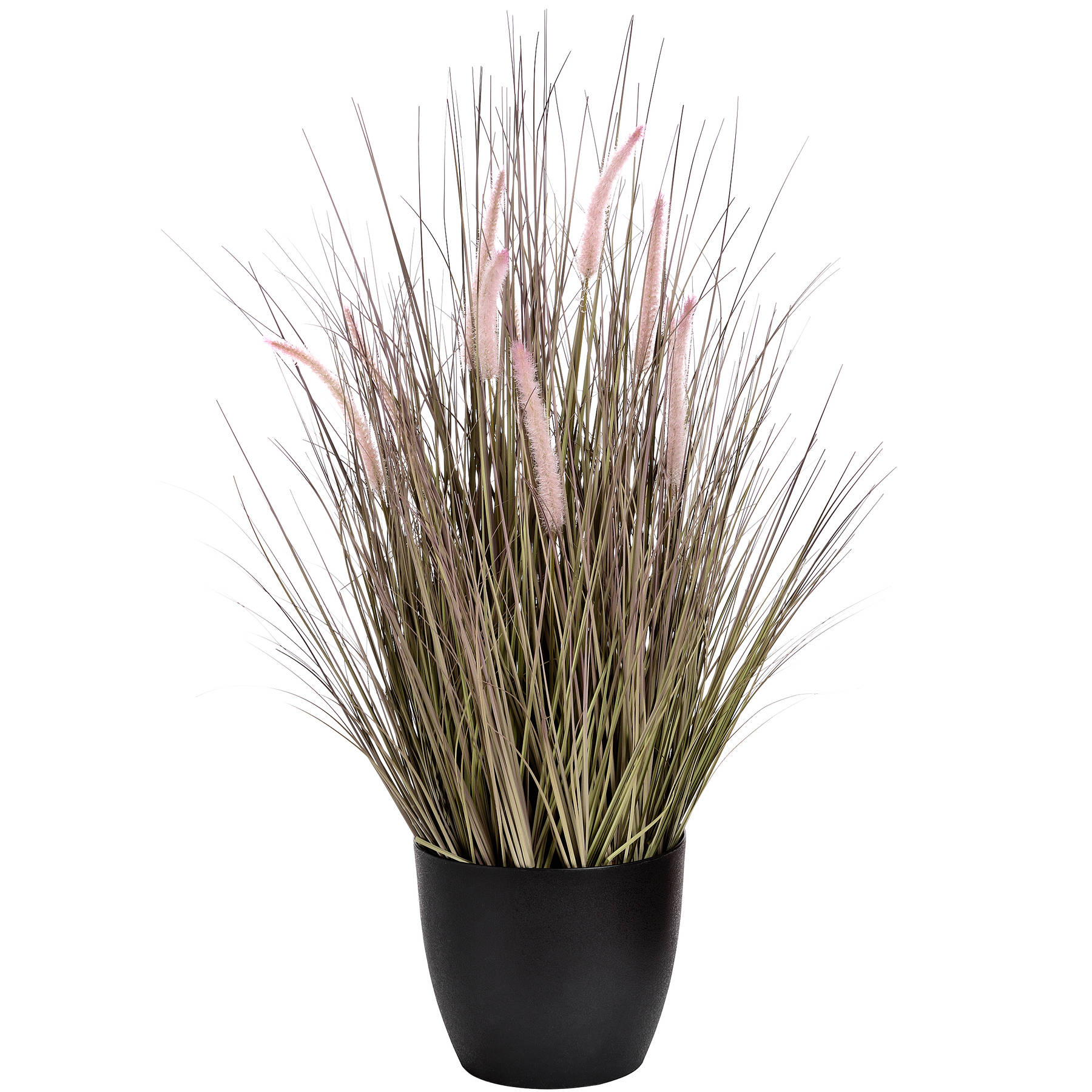 Wild Grasses, Black Pot 92cm