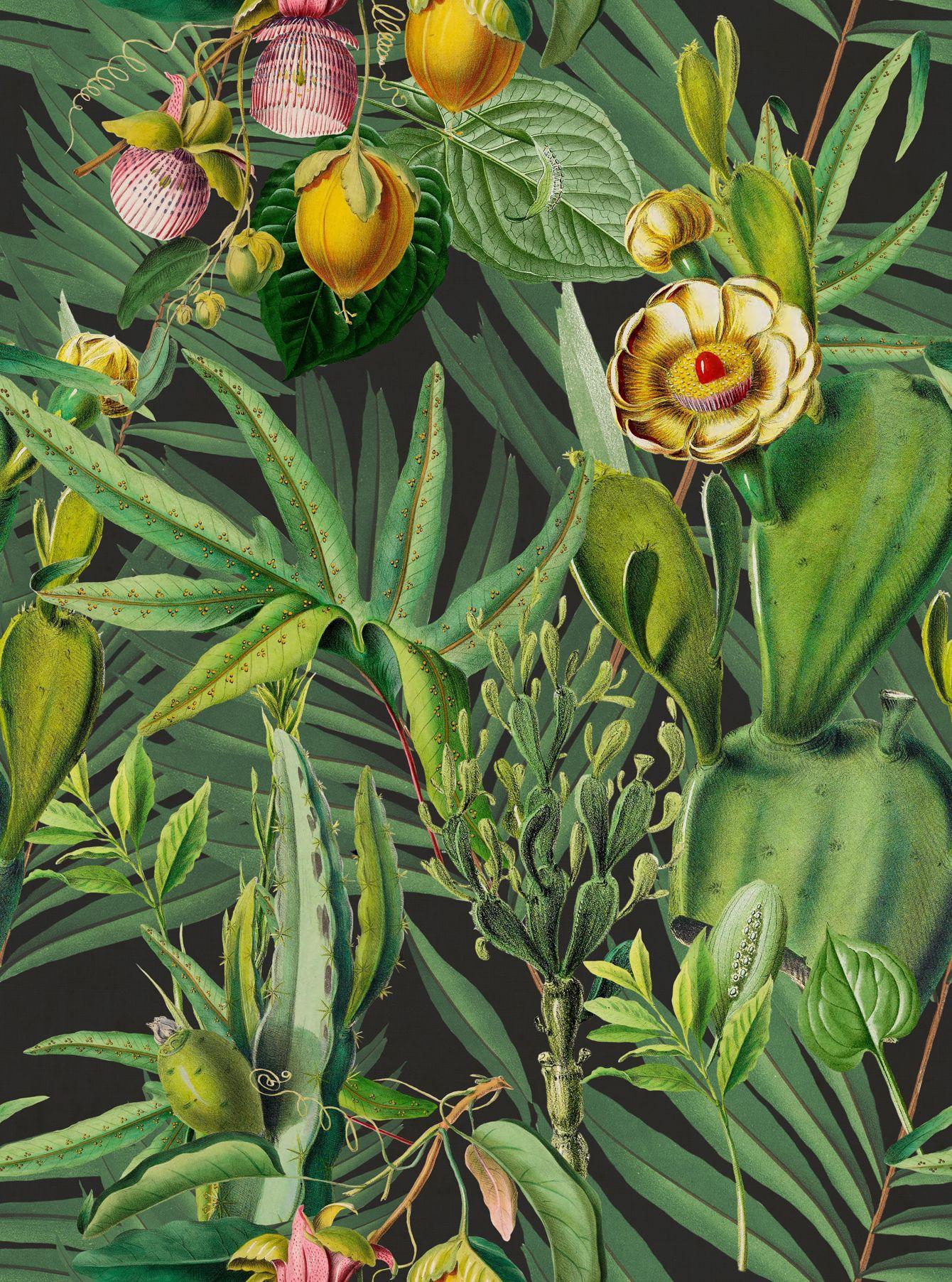 LUSCIOUS FLORA Wallpaper