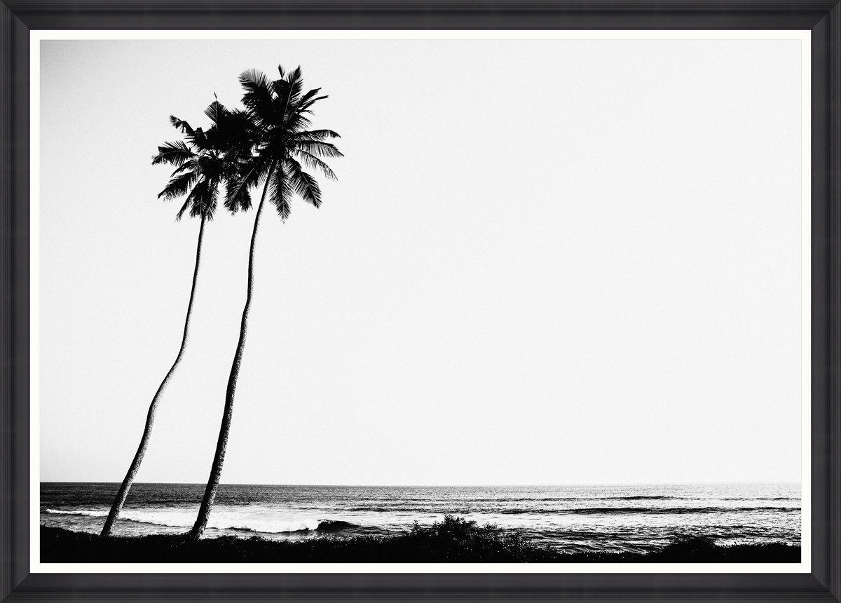 Tropical Dawn Framed Print