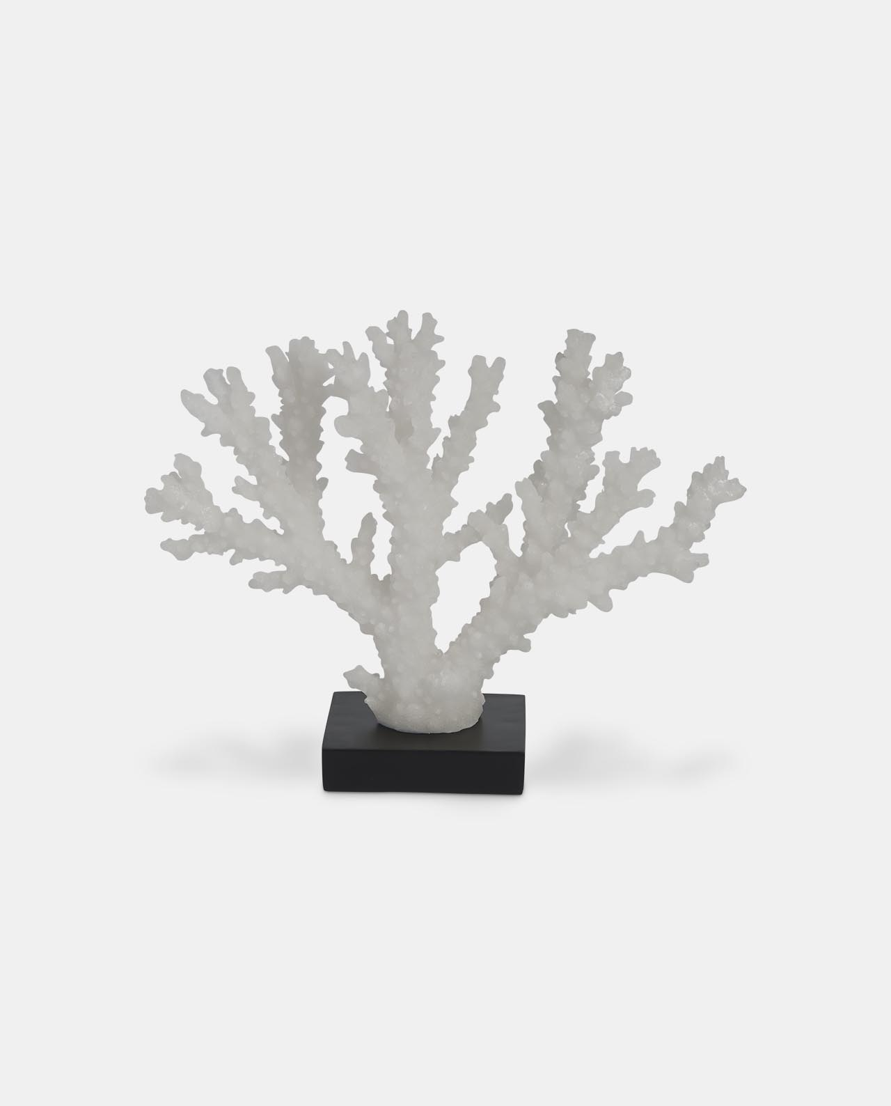 Small White Decorative Coral on Stand