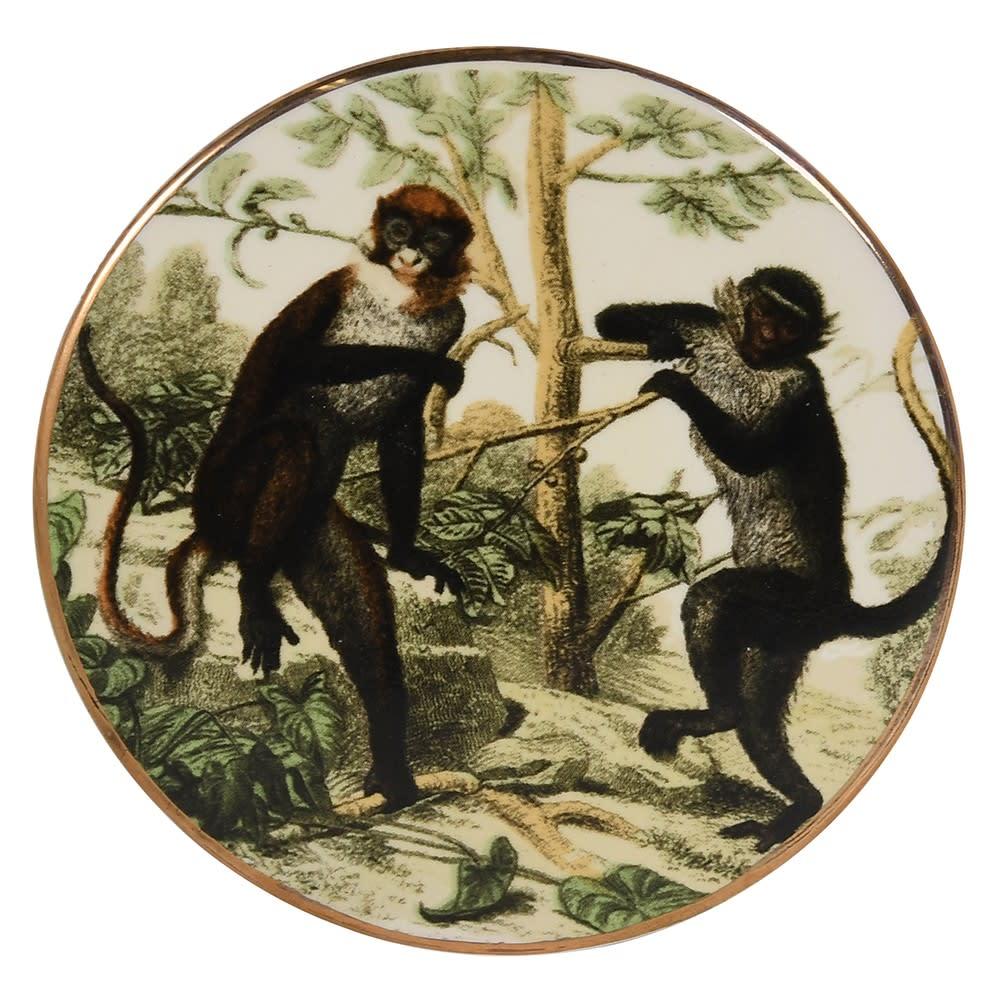 Single Monkey Coaster