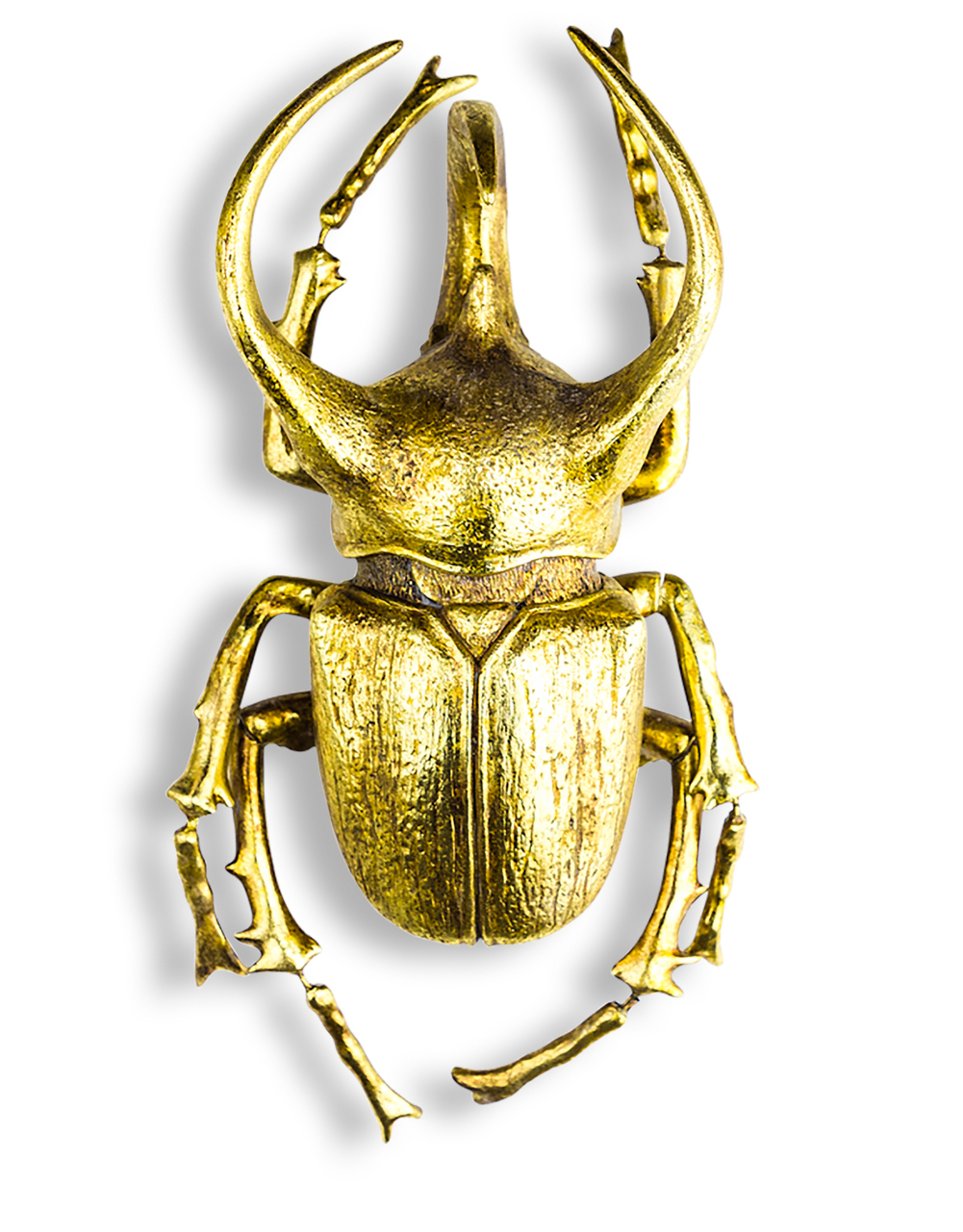 Gold Horned Beetle - Wall XL