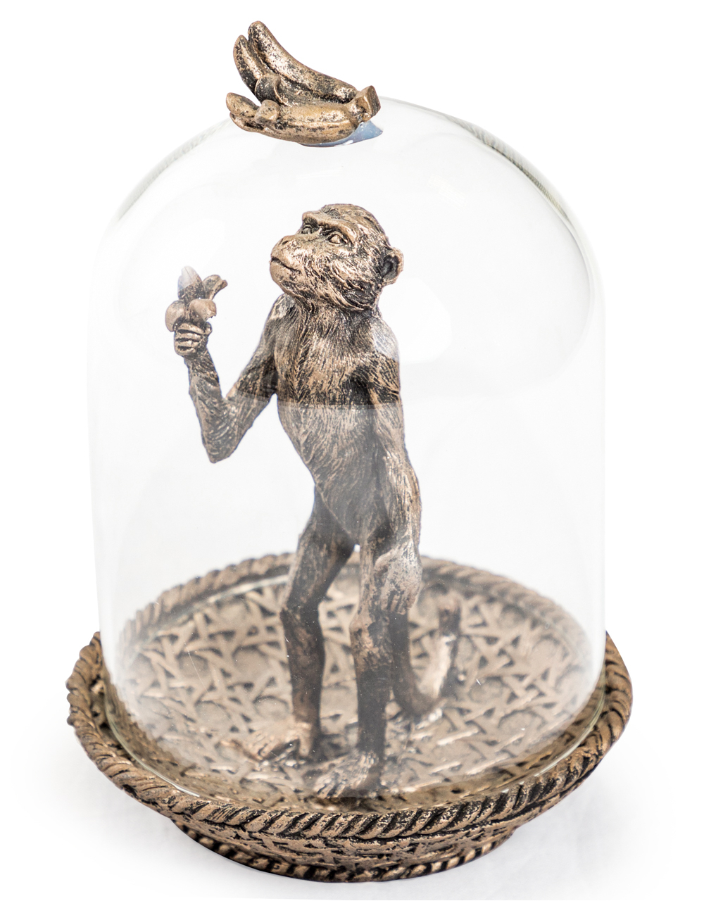 Bronze Hungry Monkey in Glass Dome