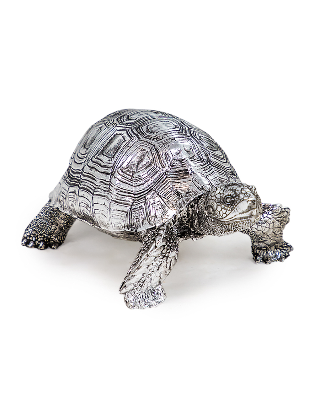 Small Silver Tortoise