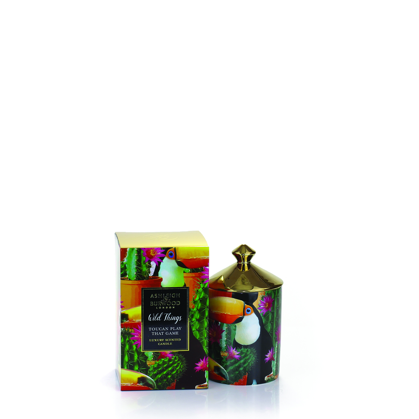 Wild Things Toucan Play that Game Candle