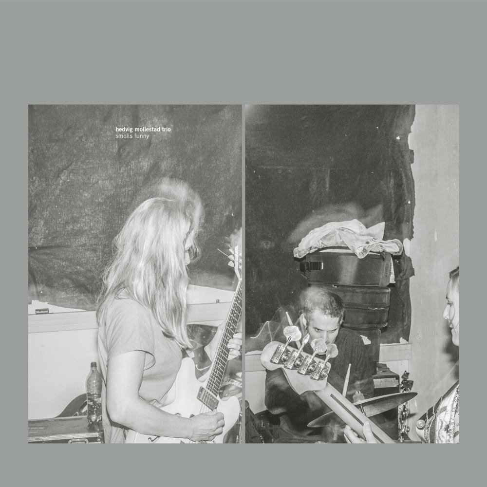 Hedvig Mollestad Trio - Smells Funny [LP]
