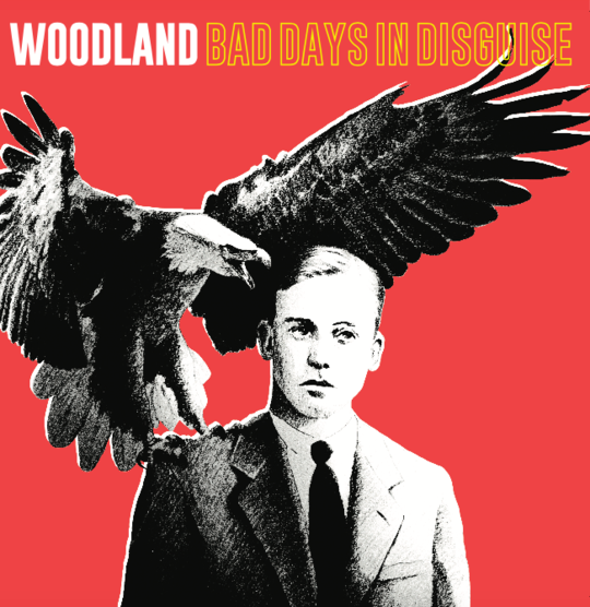 Woodland - Bad Days In Disguise [LTD LP] (Yellow & Black mixed vinyl)