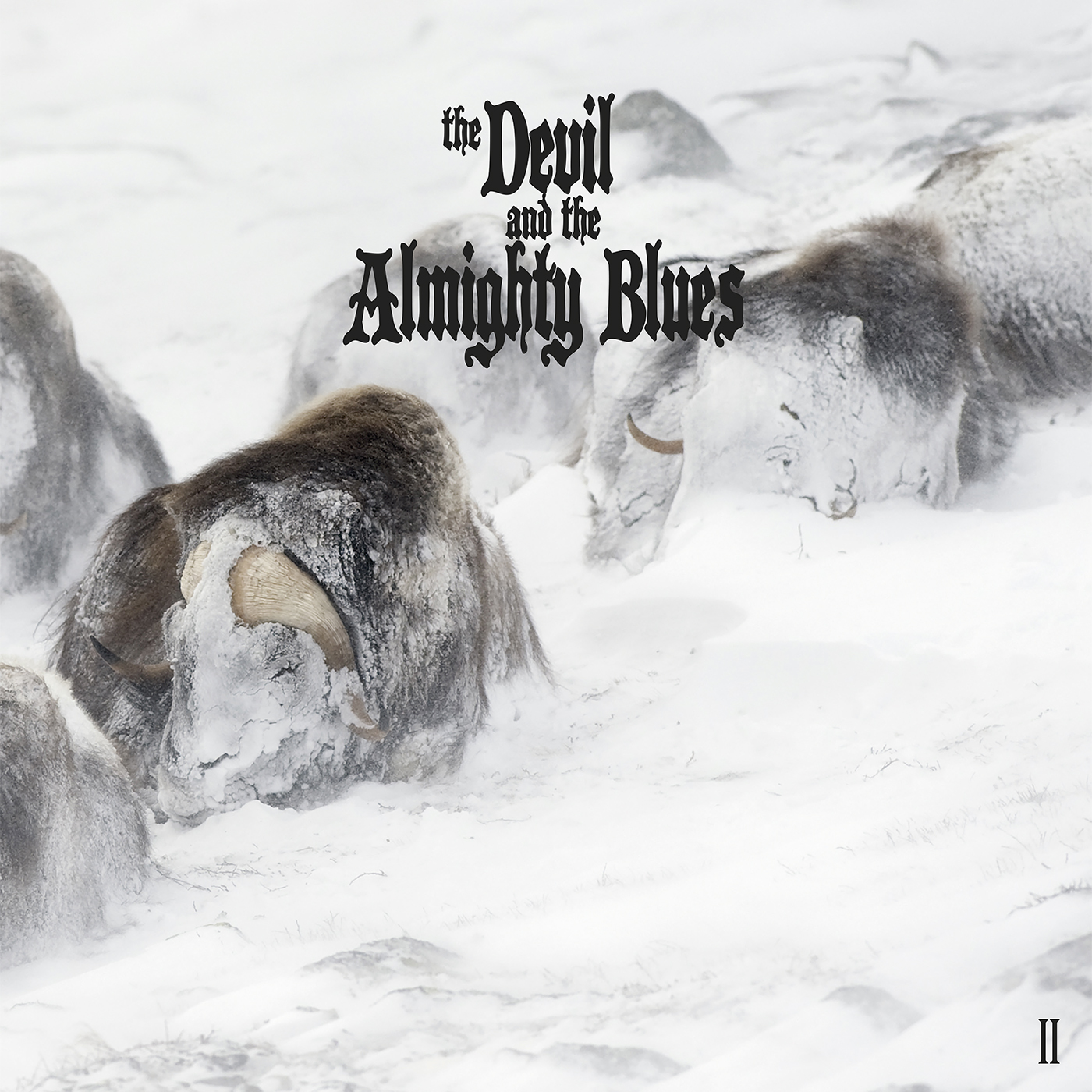 The Devil And The Almighty Blues – II [LP]