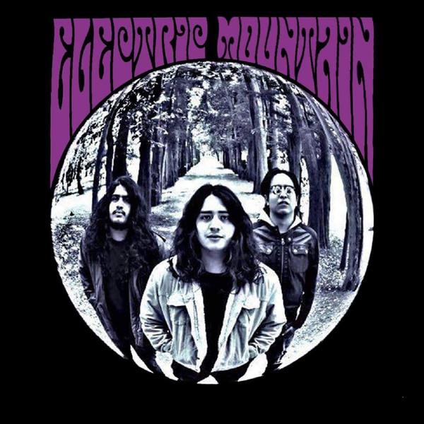 Electric Mountain - Electric Mountain [LP]