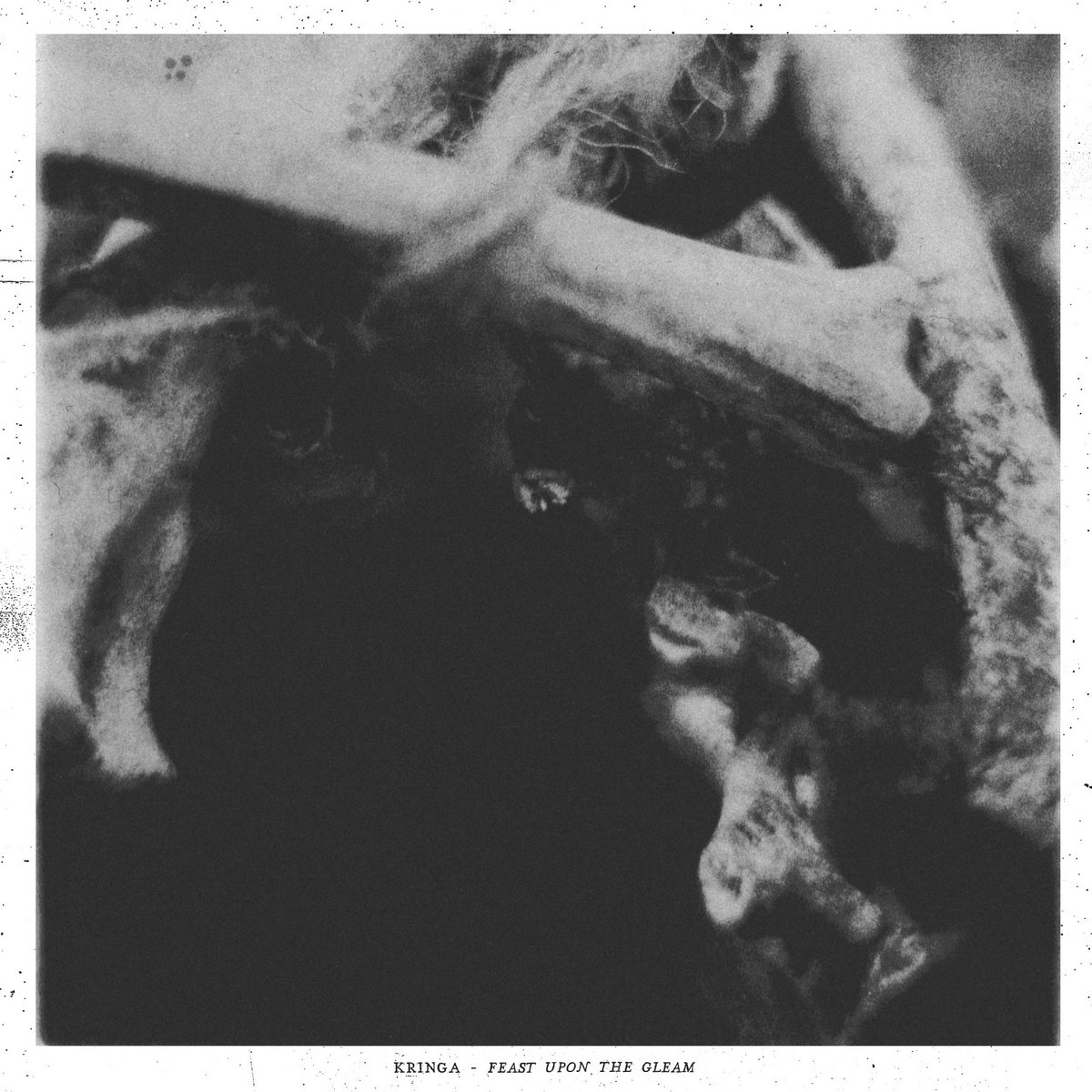 Kringa ‎– Feast Upon The Gleam [LP] (Black vinyl)