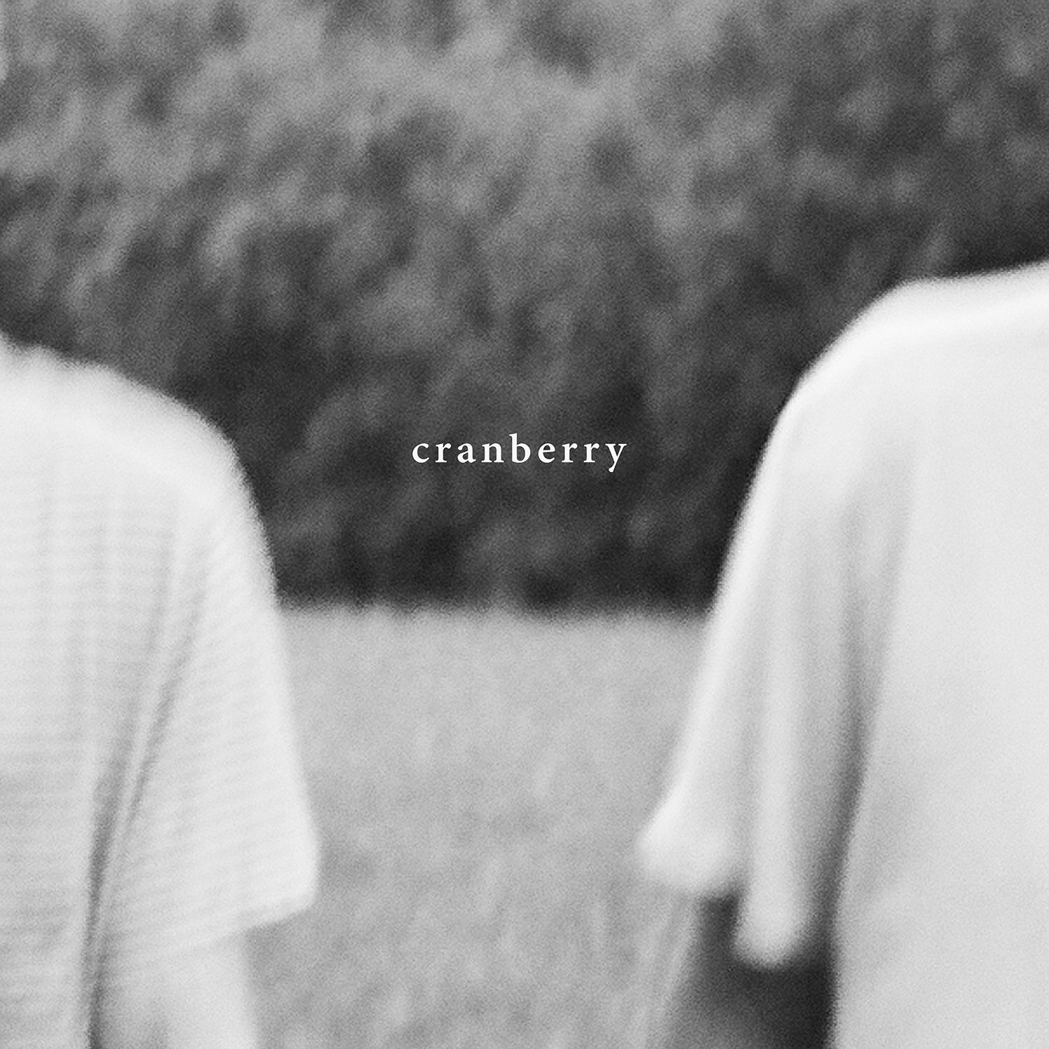 Hovvdy - Cranberry [LP]