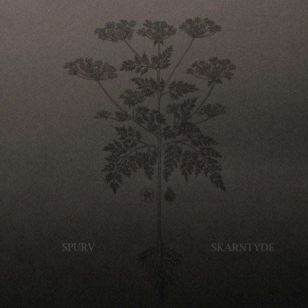 Spurv – Skarntyde [LP]