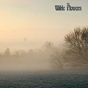 Wilde Flowers - Wilde Flowers [LP]