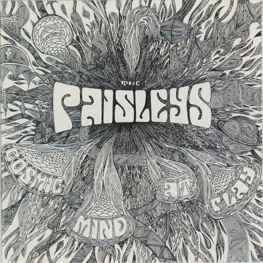 Paisleys - Cosmic Mind At Play [LP]