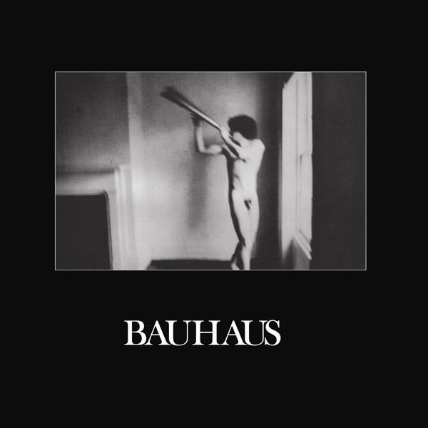 Bauhaus - In The Flat Field [LP+CD]
