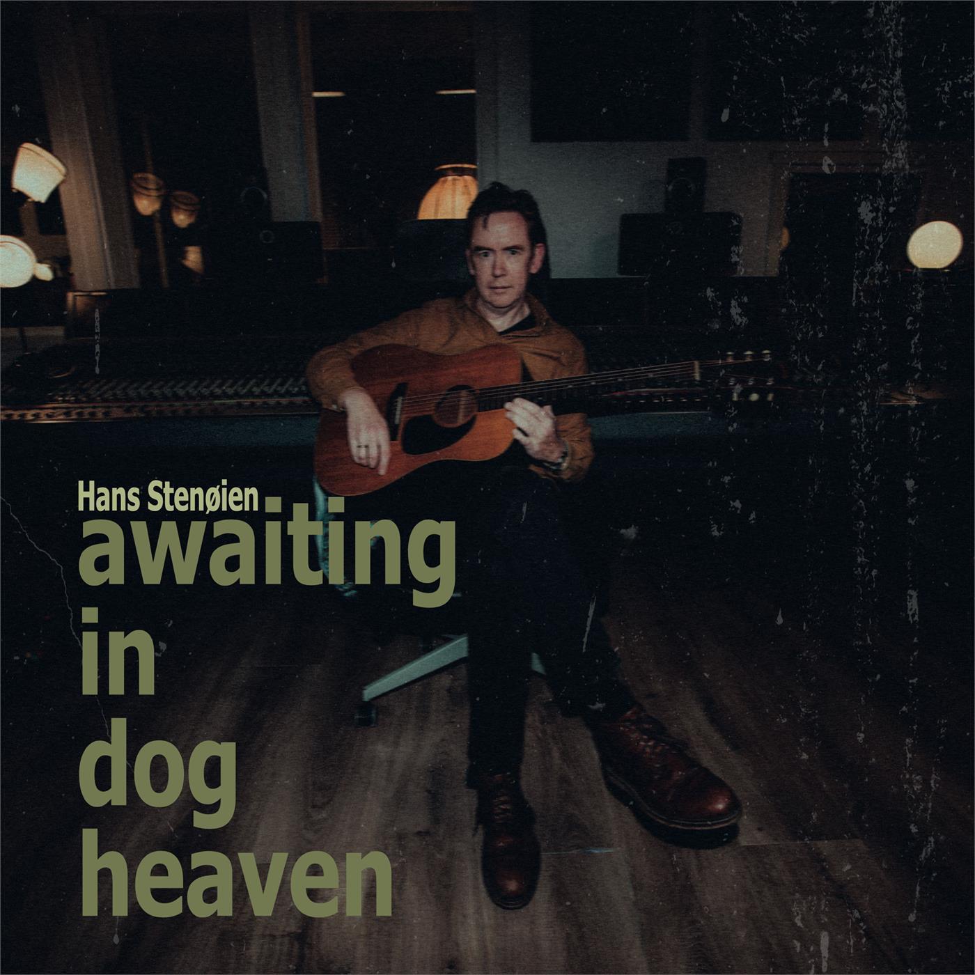 Hans Stenøien - Awaiting in Dog Heaven [LP]