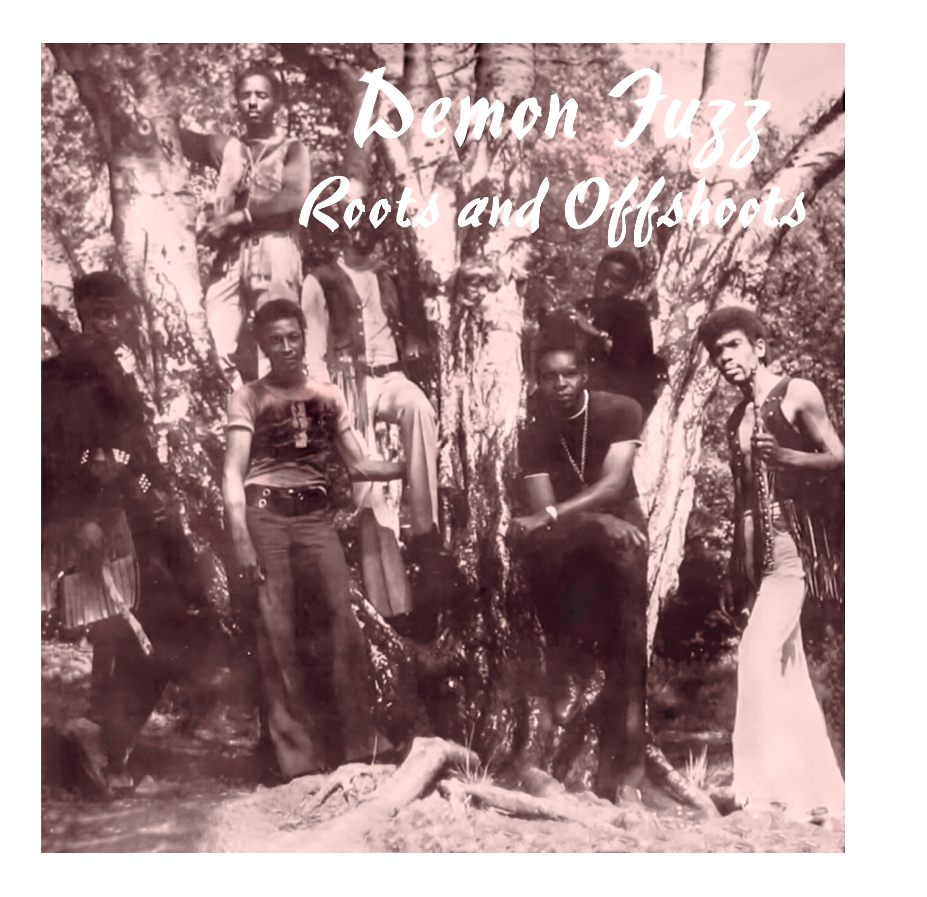 Demon Fuzz - Roots And Offshoots [LP]