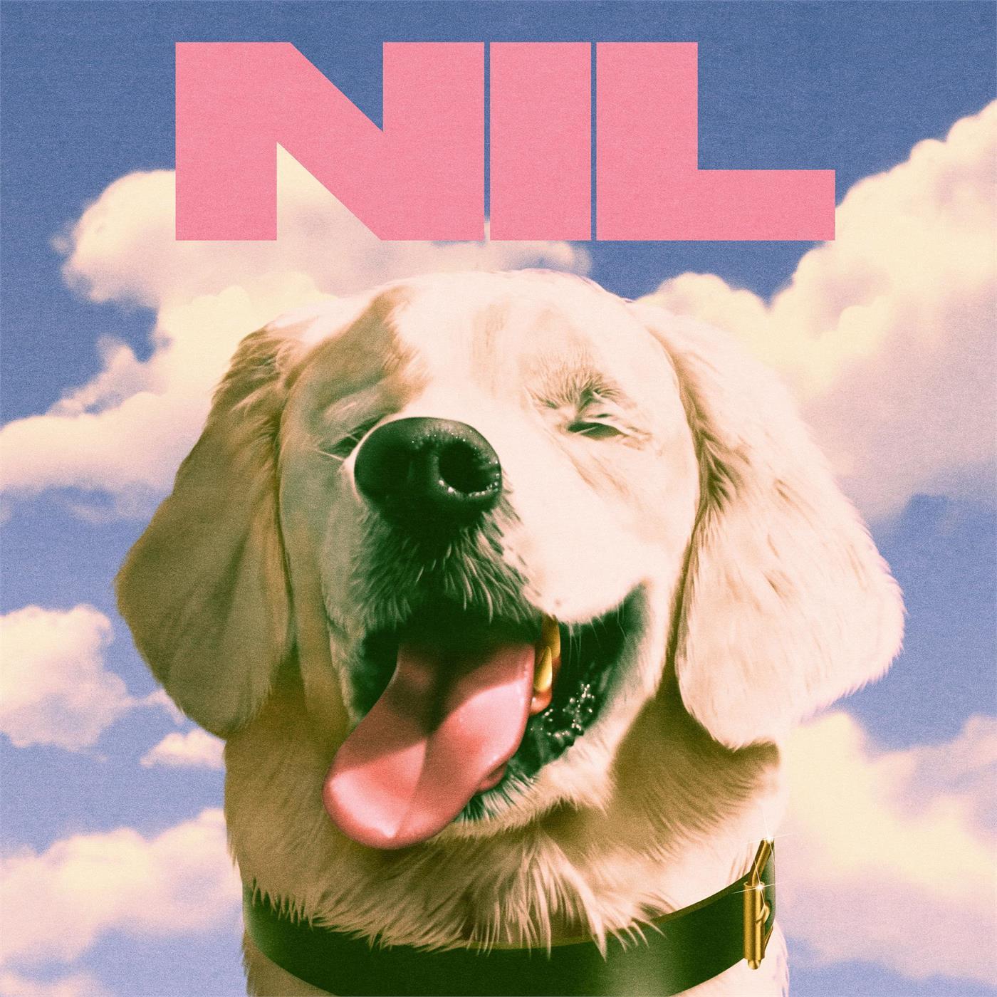 Dirty Nil - Fuck Art [LP]