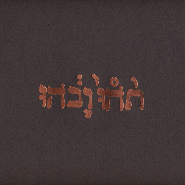 Godspeed You Black Emperor! - Slow Riot For New Zero Kanada E.P. [12