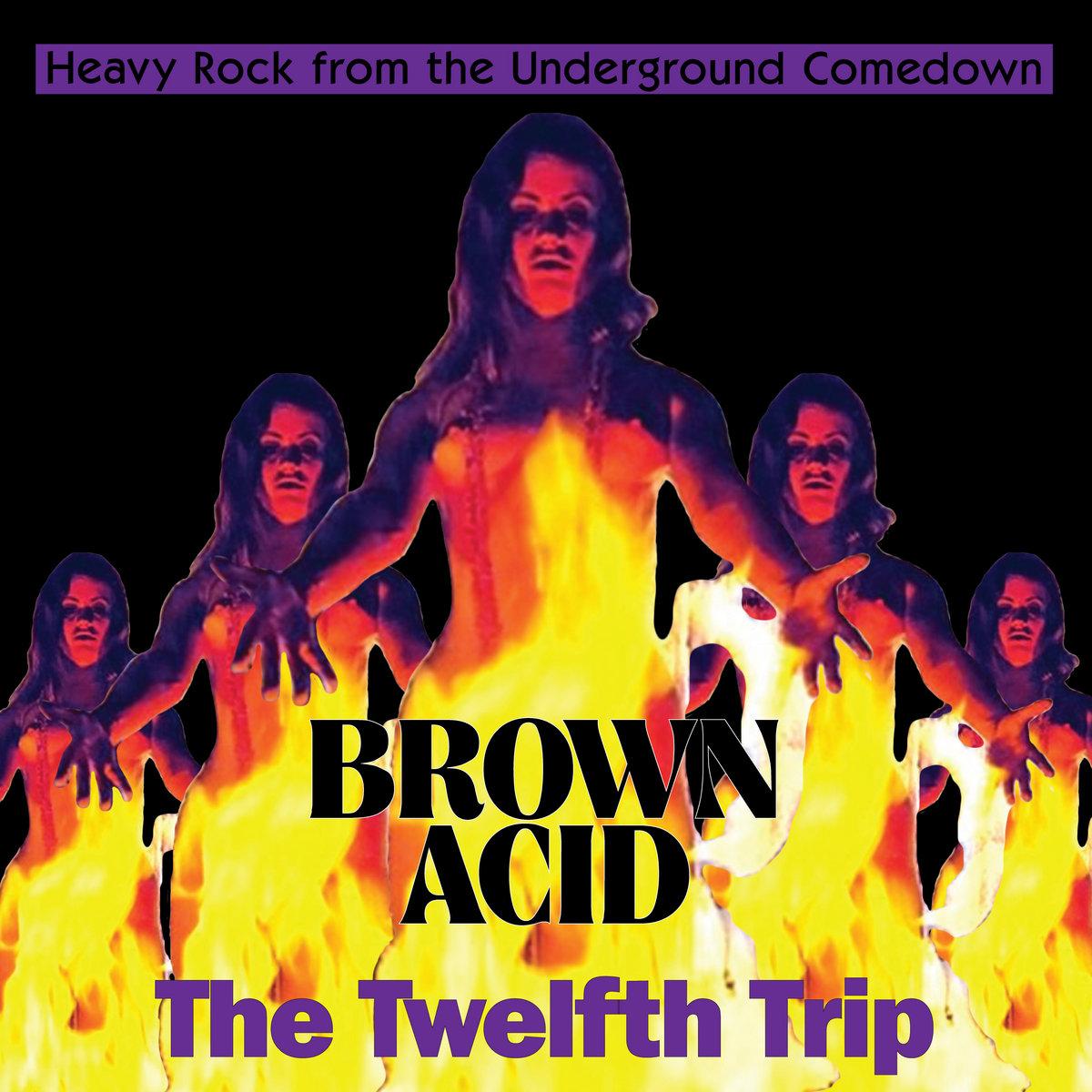 Brown Acid - The Twelfth Trip [LP]
