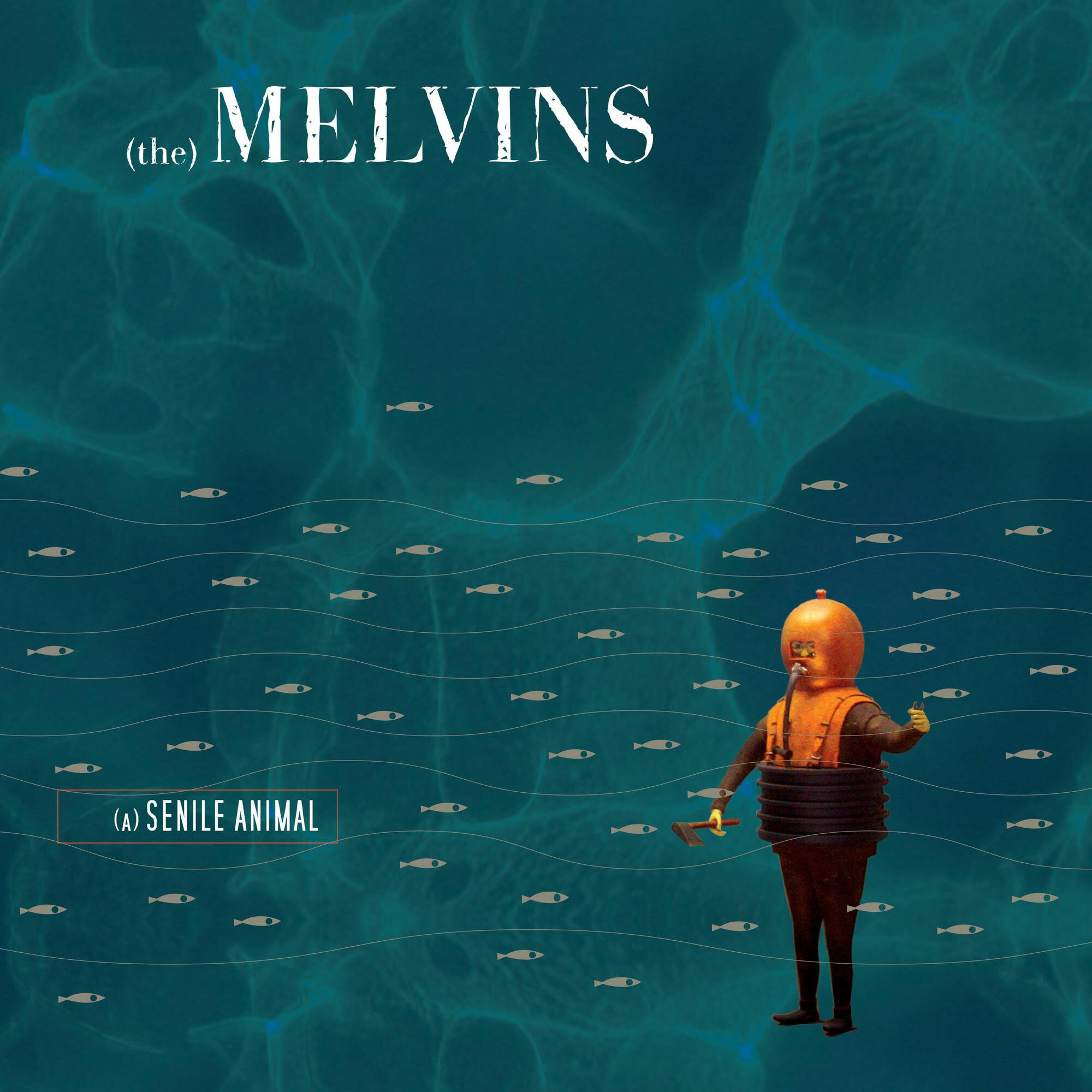 Melvins - A Senile Animal [2xLP] (sea Blue Vinyl)