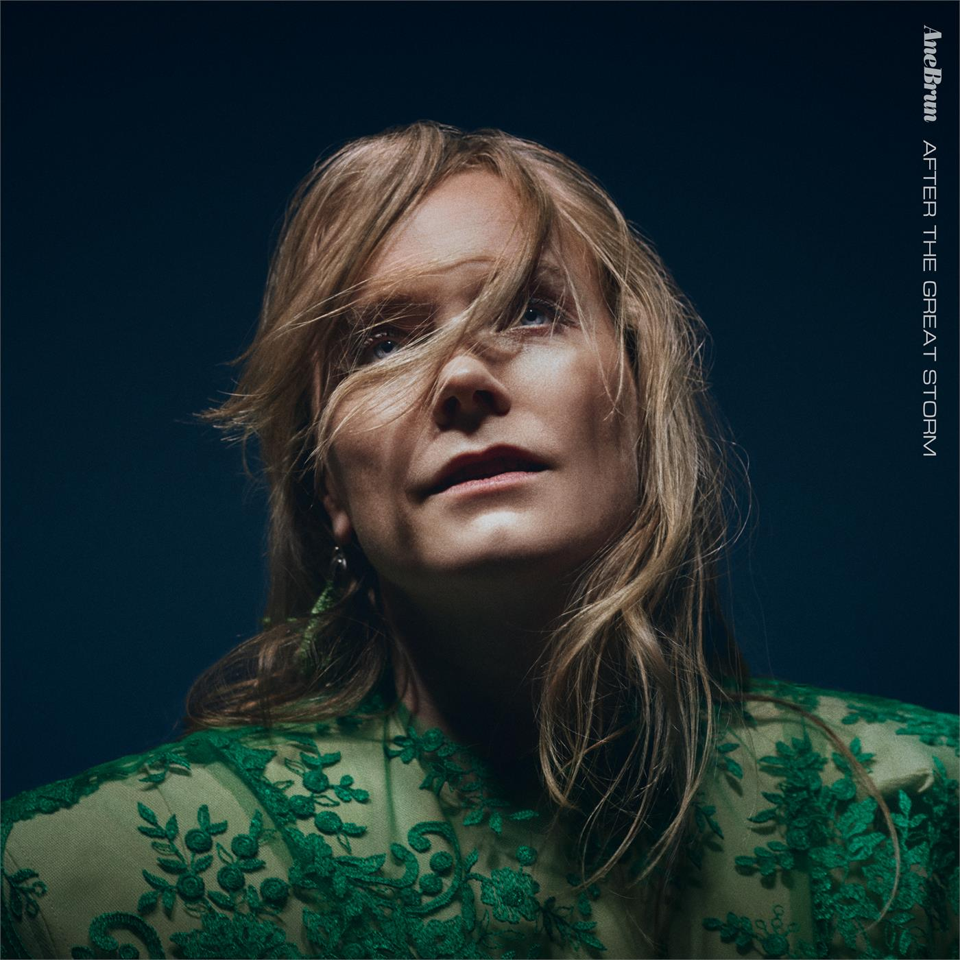 Ane Brun - After The Great Storm [LP]
