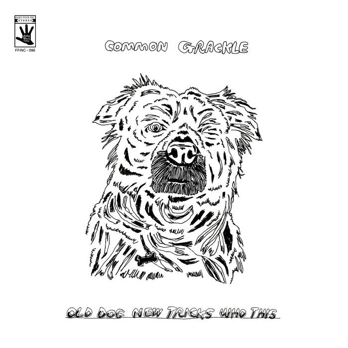 Common Grackle - Old Dog New Tricks Who This [LP]
