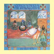 Spirogyra - Old Boot Wine [LP]