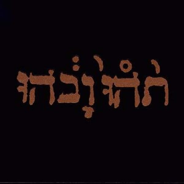 Godspeed You! Black Emperor - Slow Riot For a New Zero Kanada [LP]