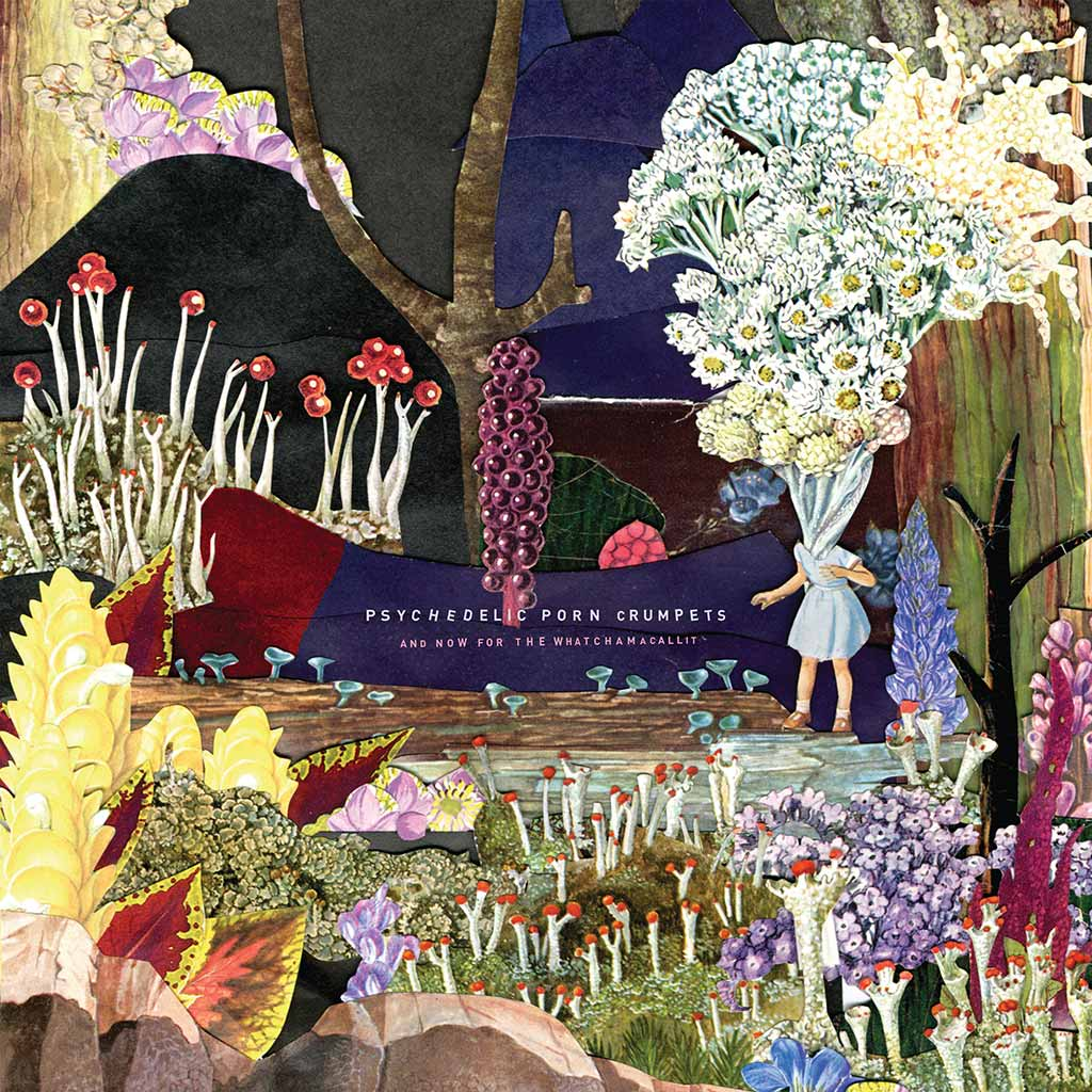 Psychedelic Porn Crumpets - And Now For The Whatchamacallit [LP] (3-colour Splatter vinyl)
