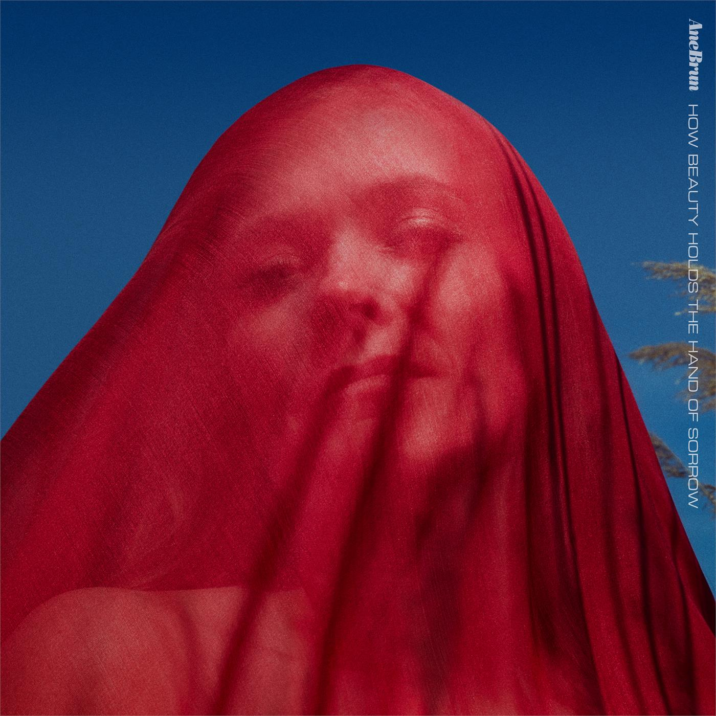 Ane Brun - How Beauty Holds The Hand Of Sorrow [LP]