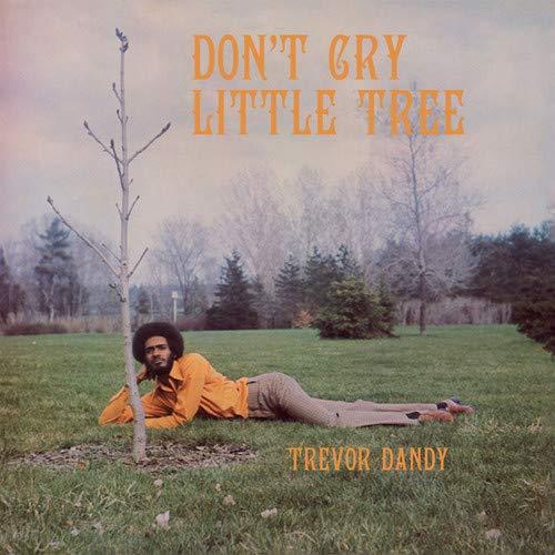 Trevor Dandy - Don't Cry Little Tree [LP]