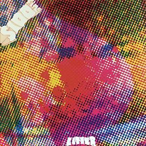 Litter - $ 100 Fine [LP]