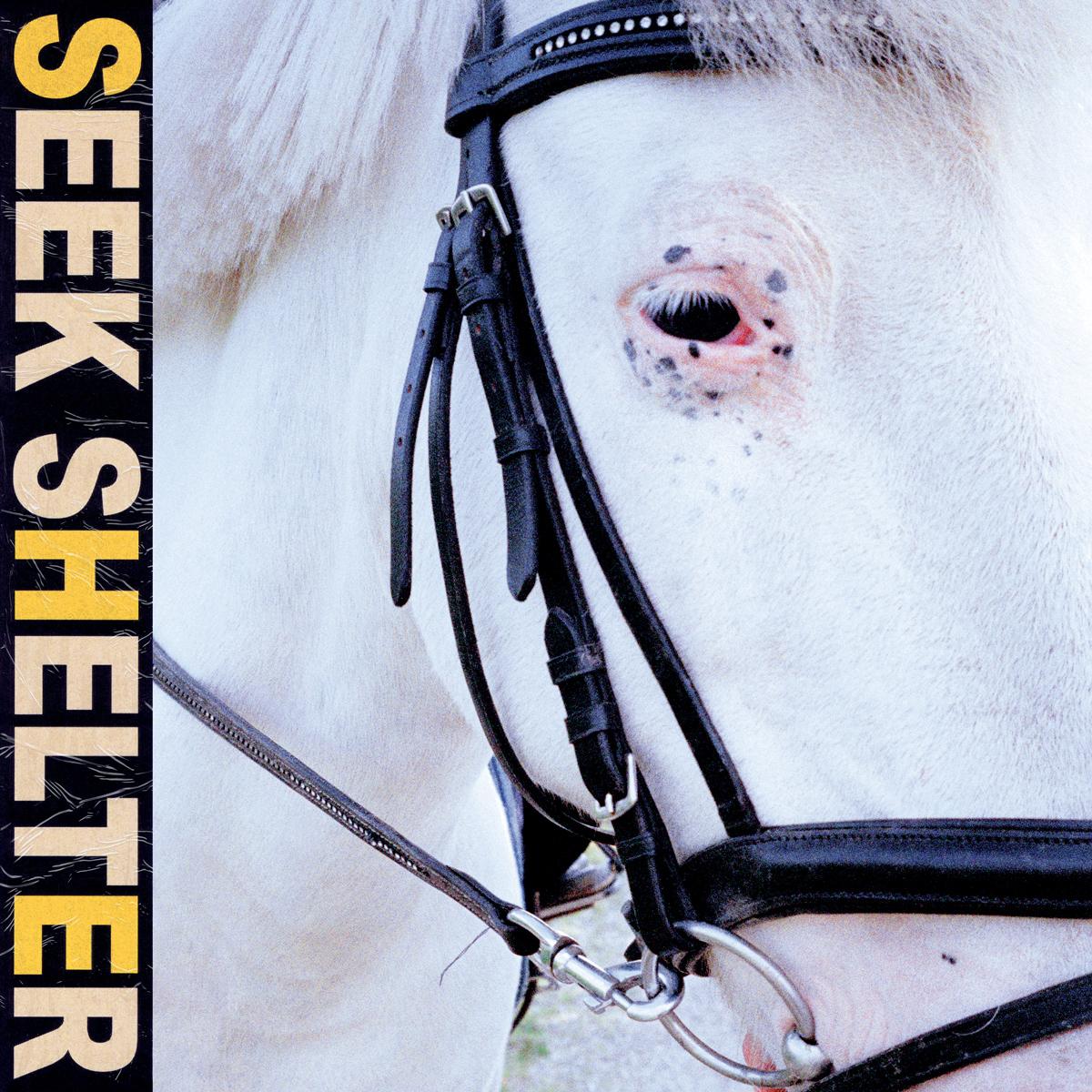 Iceage - Seek Shelter [LP]