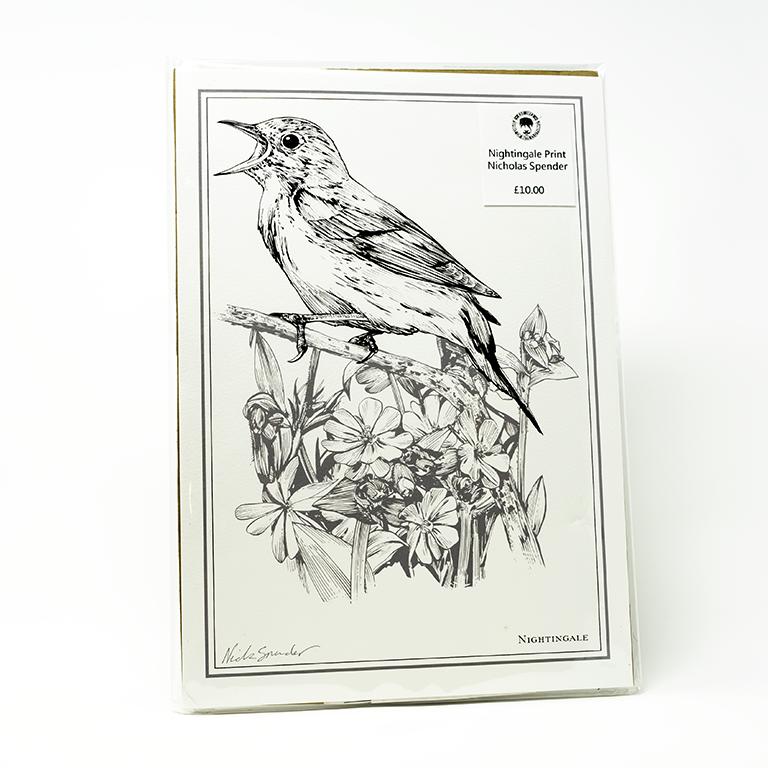 Prints - Nicholas Spender